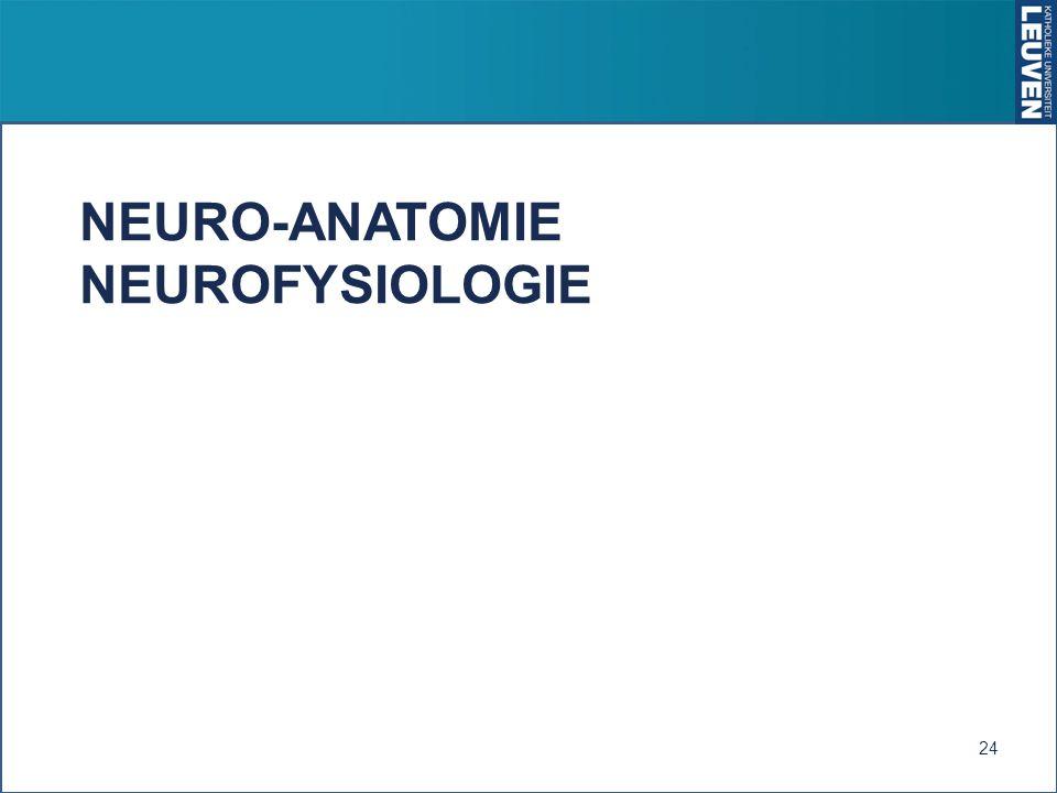 Neuro-anatomie neurofysiologie