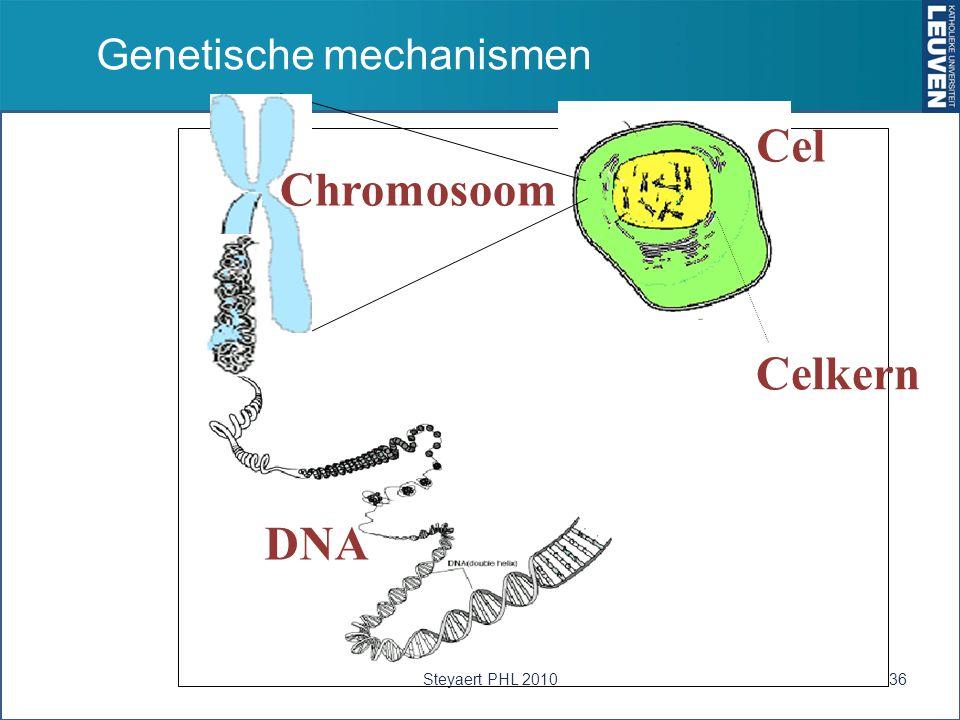Genetische mechanismen