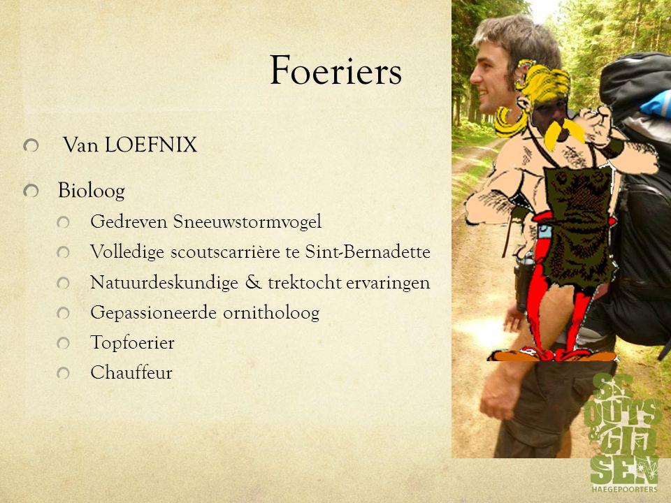 Foeriers Van LOEFNIX Bioloog Gedreven Sneeuwstormvogel