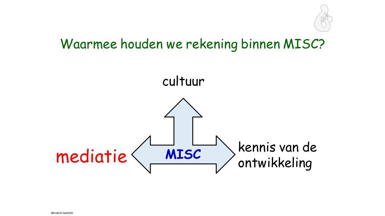 Waarmee houden we rekening binnen MISC