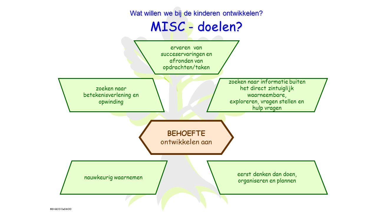 MISC - doelen Wat willen we bij de kinderen ontwikkelen BEHOEFTE