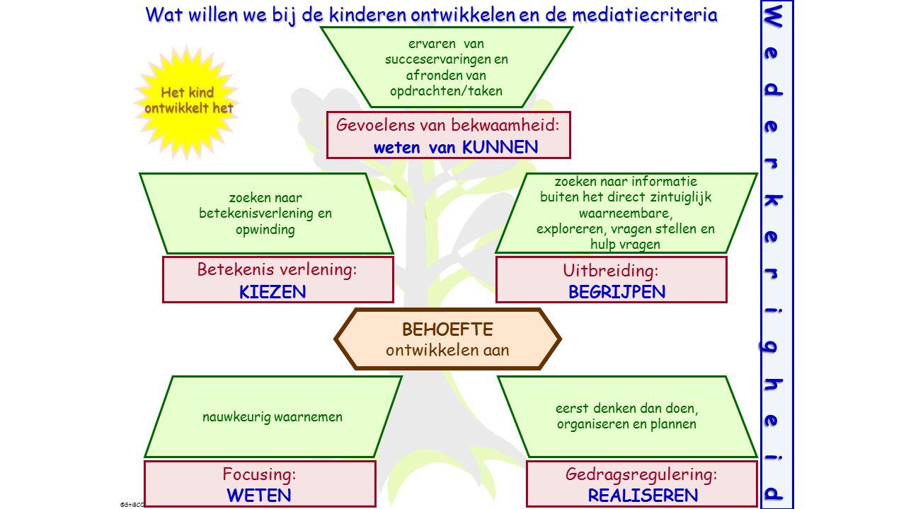 Wat willen we bij de kinderen ontwikkelen en de mediatiecriteria