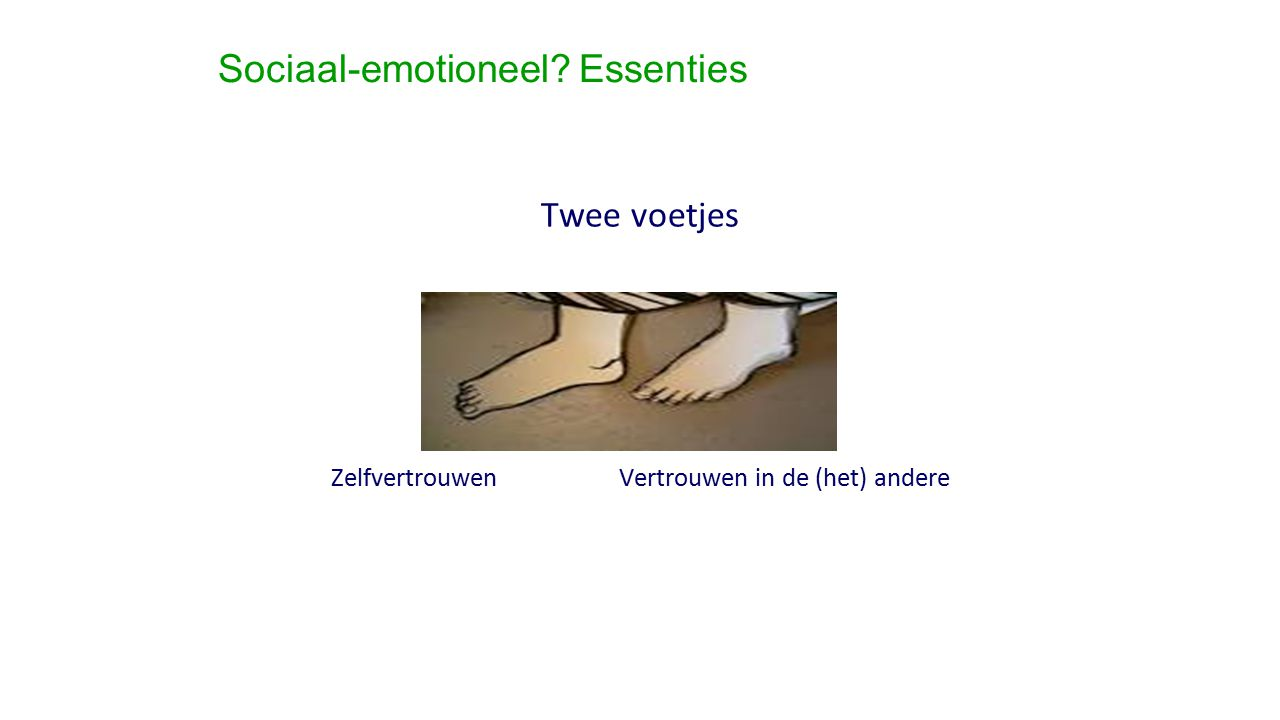 Sociaal-emotioneel Essenties