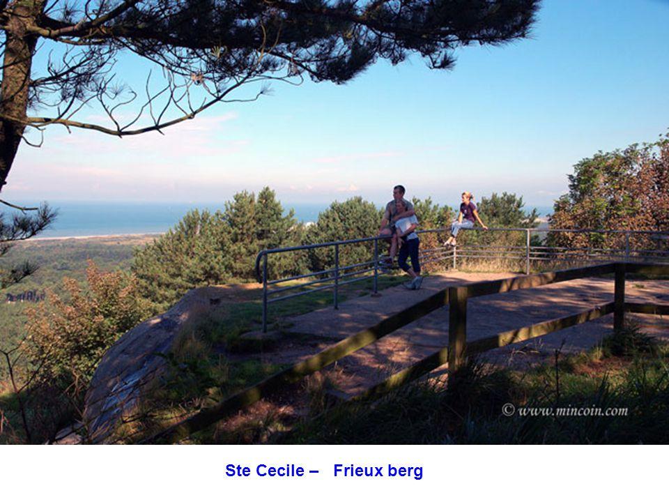 Ste Cecile – Frieux berg
