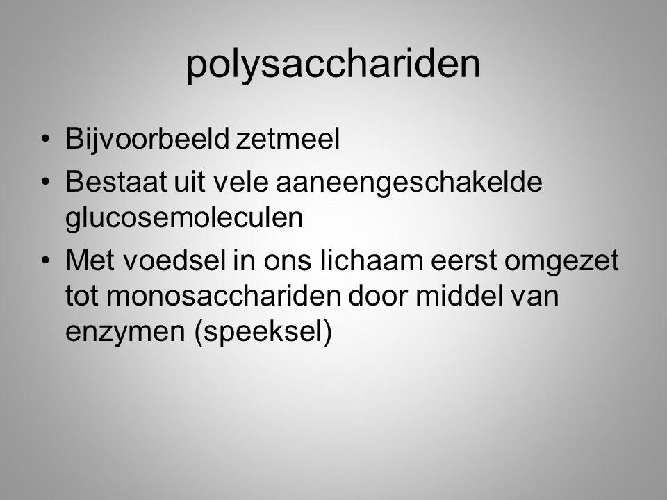 polysacchariden Bijvoorbeeld zetmeel