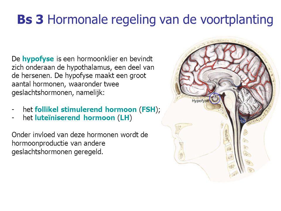 Bs 3 Hormonale regeling van de voortplanting