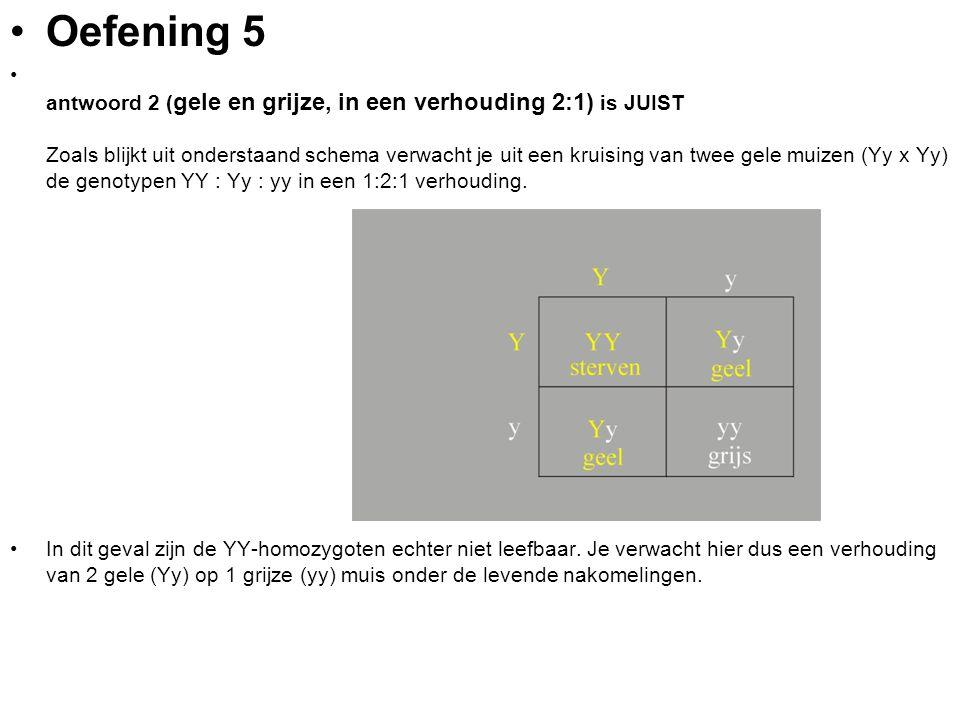 Oefening 5