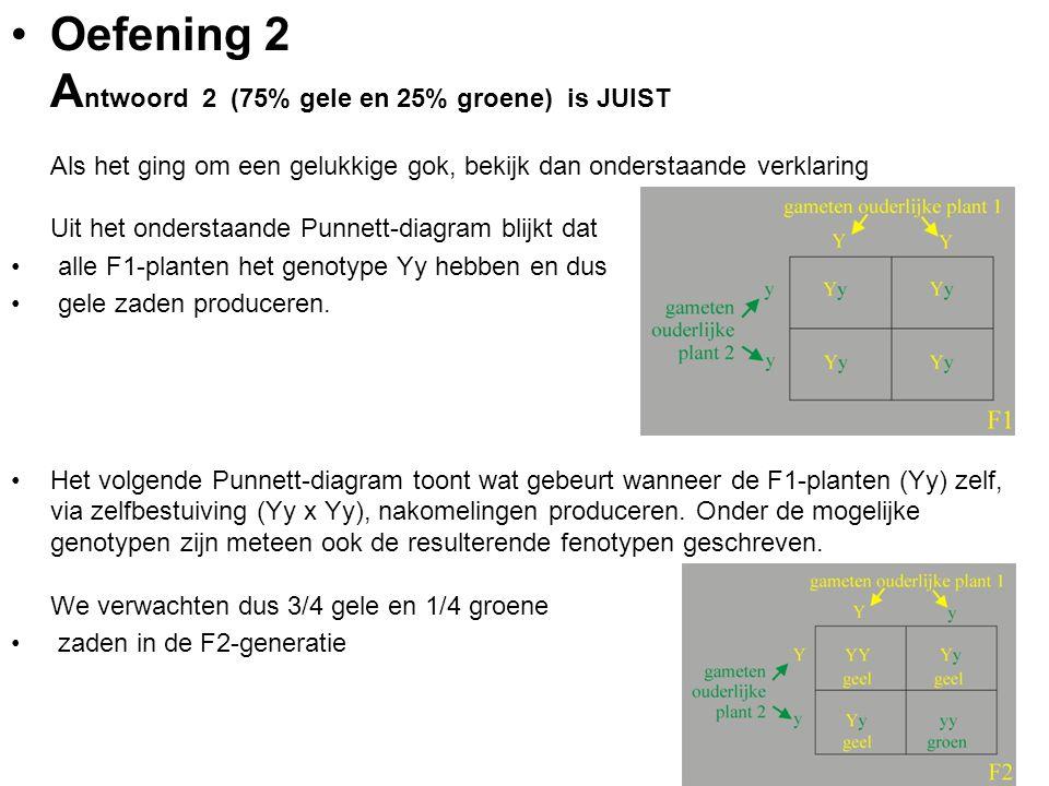 Oefening 2 Antwoord 2 (75% gele en 25% groene) is JUIST Als het ging om een gelukkige gok, bekijk dan onderstaande verklaring Uit het onderstaande Punnett-diagram blijkt dat