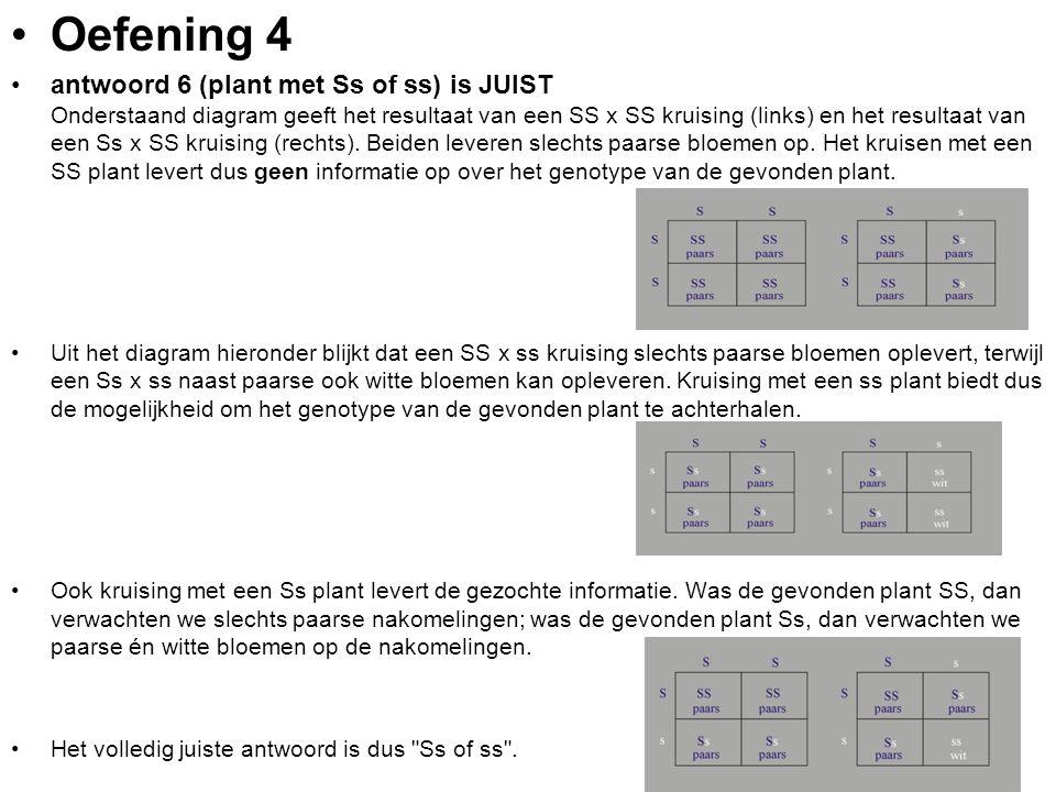 Oefening 4