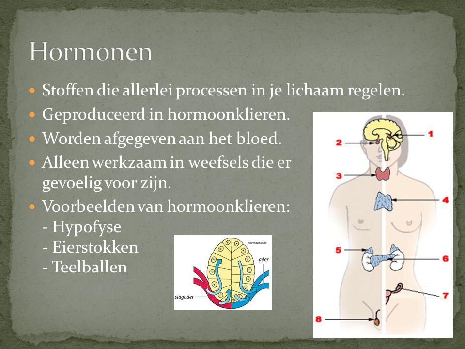 Hormonen Stoffen die allerlei processen in je lichaam regelen.