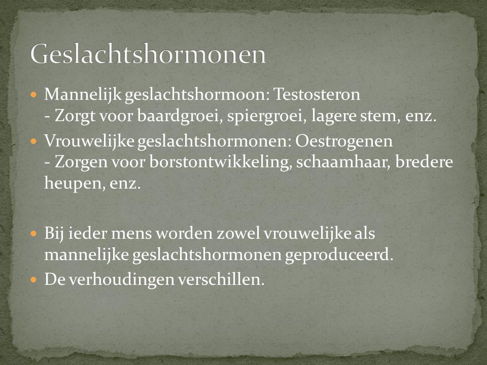 Geslachtshormonen Mannelijk geslachtshormoon: Testosteron - Zorgt voor baardgroei, spiergroei, lagere stem, enz.