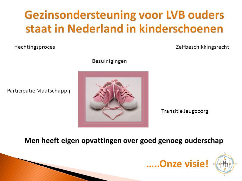 Gezinsondersteuning voor LVB ouders staat in Nederland in kinderschoenen