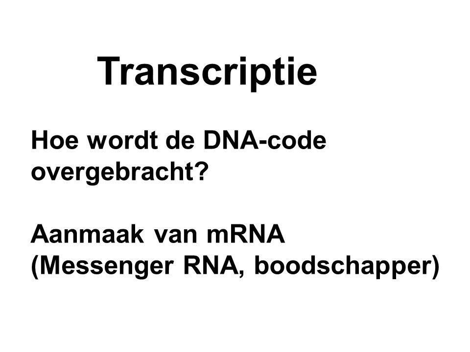 Transcriptie Hoe wordt de DNA-code overgebracht Aanmaak van mRNA