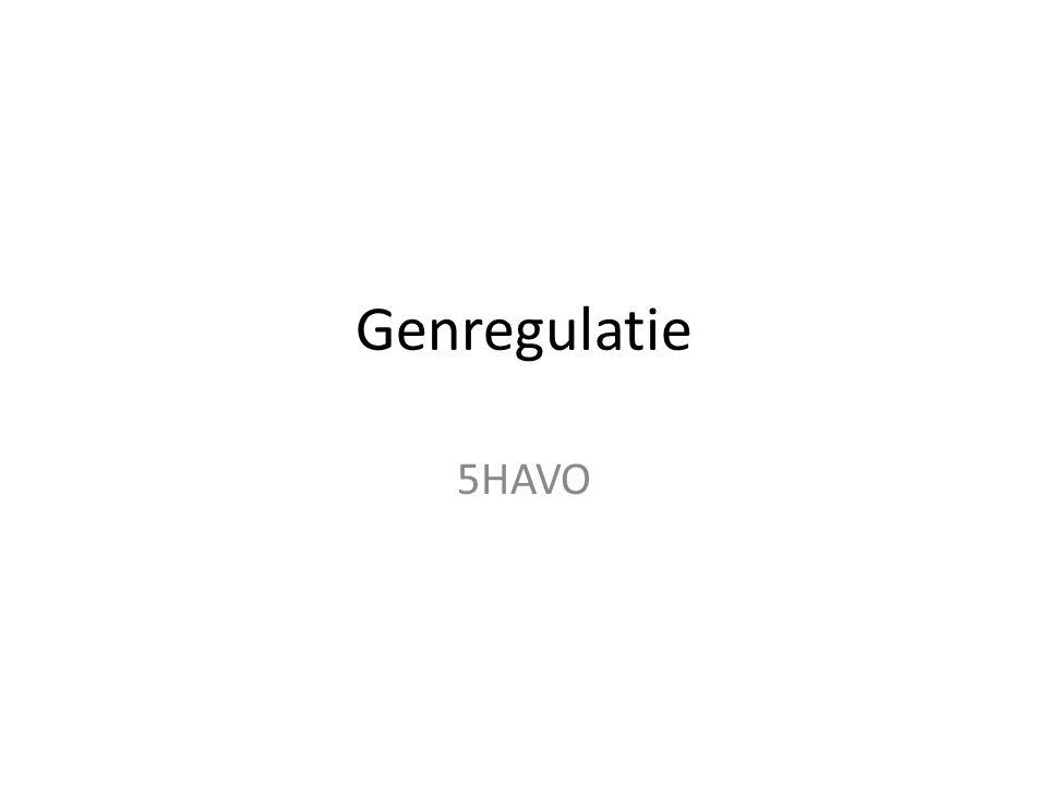Genregulatie 5HAVO