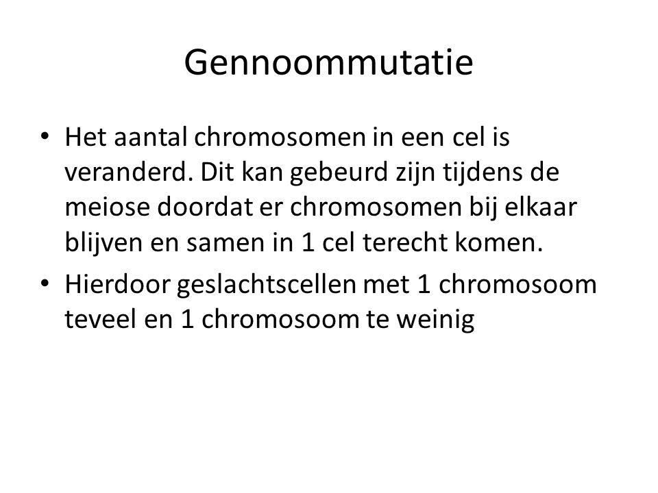 Gennoommutatie