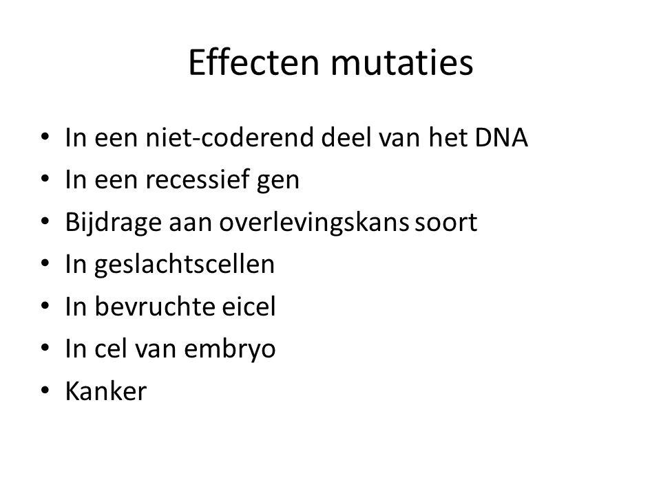 Effecten mutaties In een niet-coderend deel van het DNA