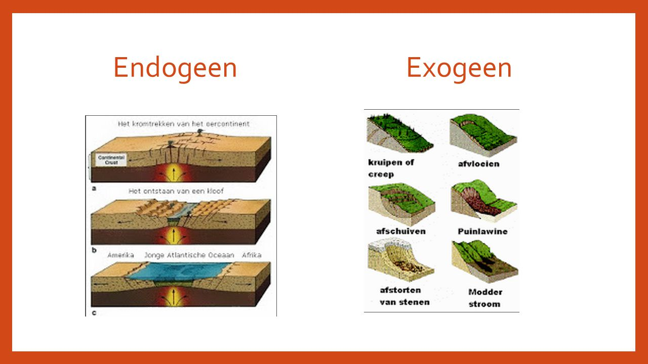 Endogeen Exogeen