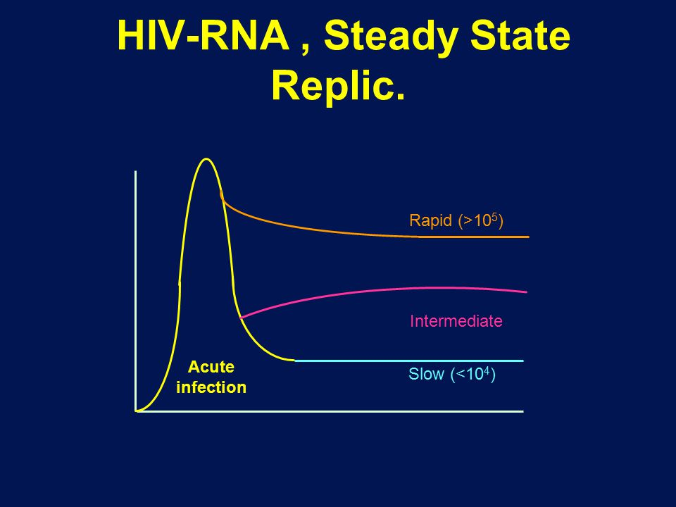 HIV-RNA , Steady State Replic.