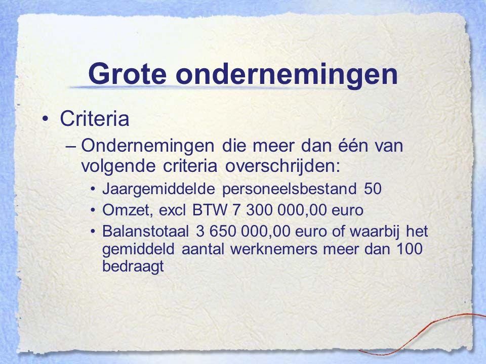 Grote ondernemingen Criteria