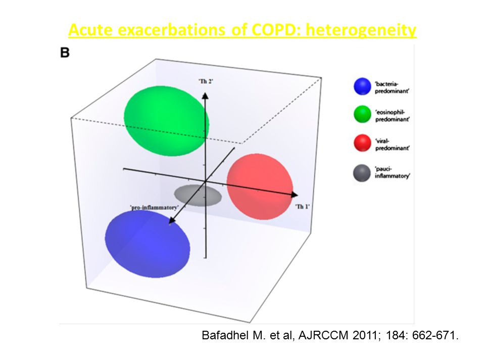 Acute exacerbations of COPD: heterogeneity