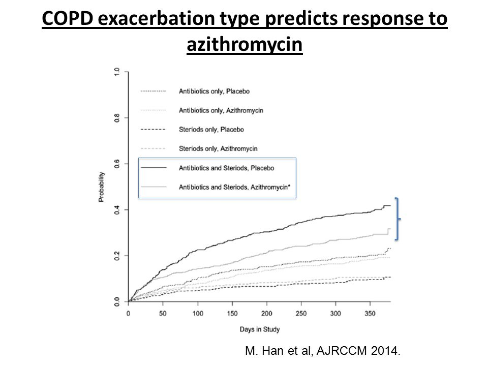 COPD exacerbation type predicts response to azithromycin
