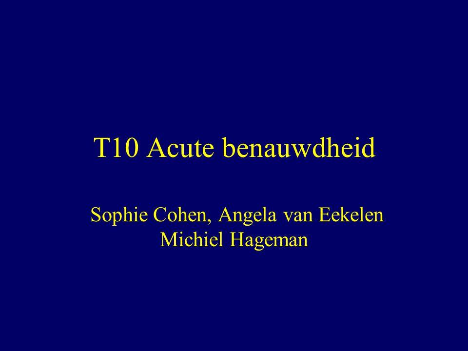 Sophie Cohen, Angela van Eekelen Michiel Hageman