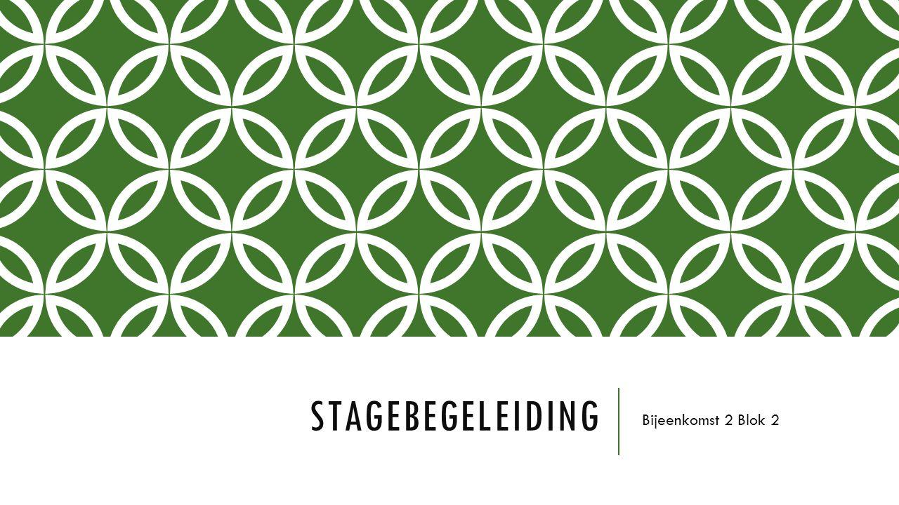 Stagebegeleiding Bijeenkomst 2 Blok 2