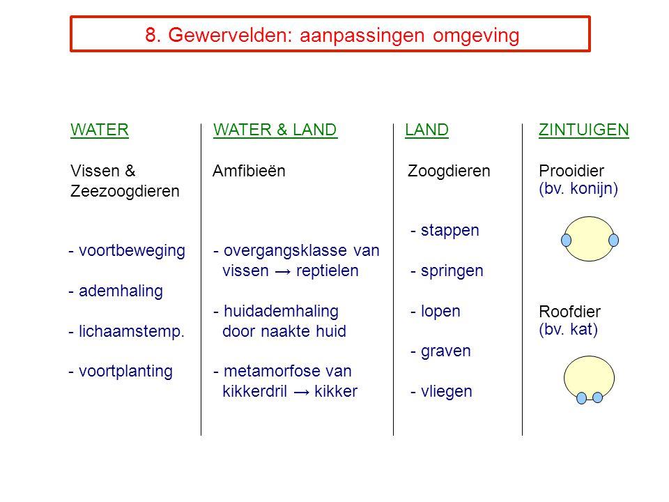 8. Gewervelden: aanpassingen omgeving