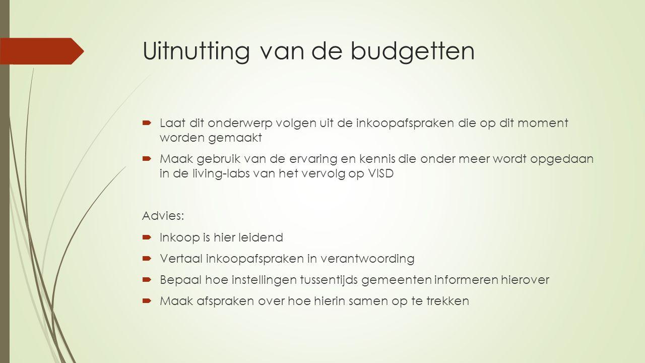 Uitnutting van de budgetten