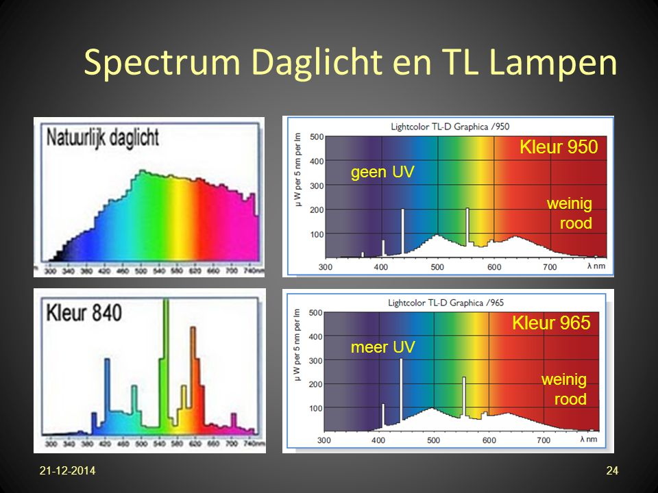 Spectrum Daglicht en TL Lampen