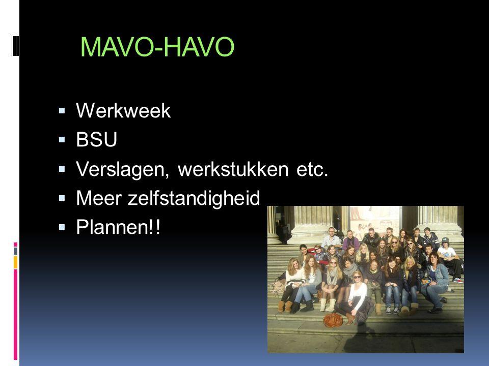 MAVO-HAVO Werkweek BSU Verslagen, werkstukken etc.