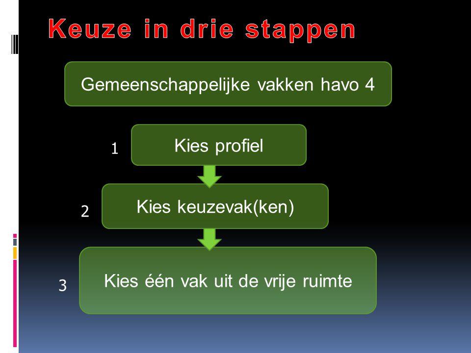 Keuze in drie stappen Gemeenschappelijke vakken havo 4 Kies profiel