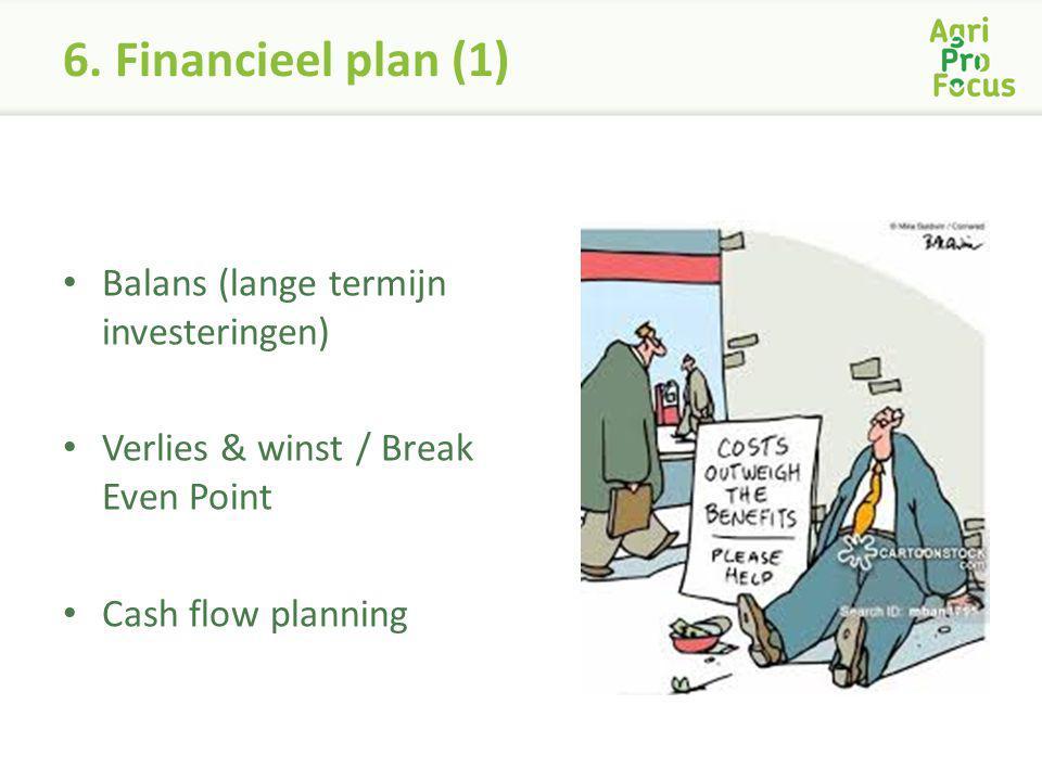 6. Financieel plan (1) Balans (lange termijn investeringen)
