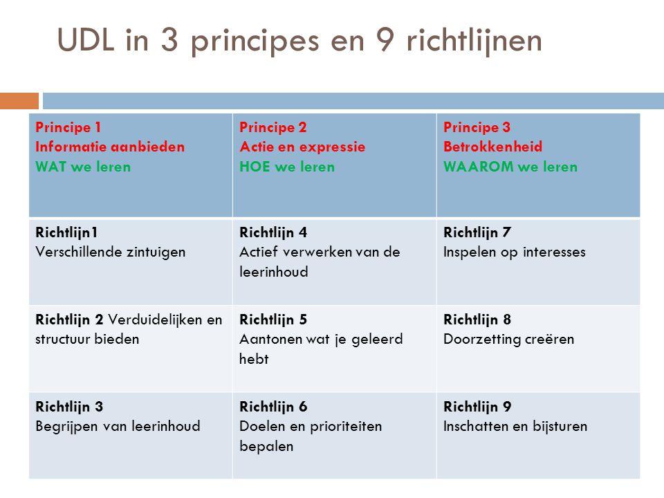 UDL in 3 principes en 9 richtlijnen