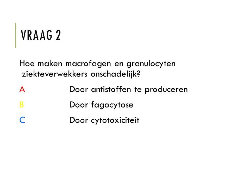 Vraag 2 Hoe maken macrofagen en granulocyten ziekteverwekkers onschadelijk A Door antistoffen te produceren.