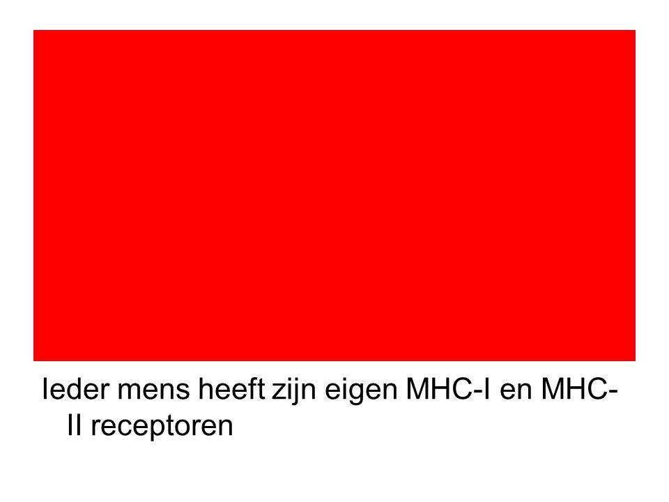Ieder mens heeft zijn eigen MHC-I en MHC-II receptoren