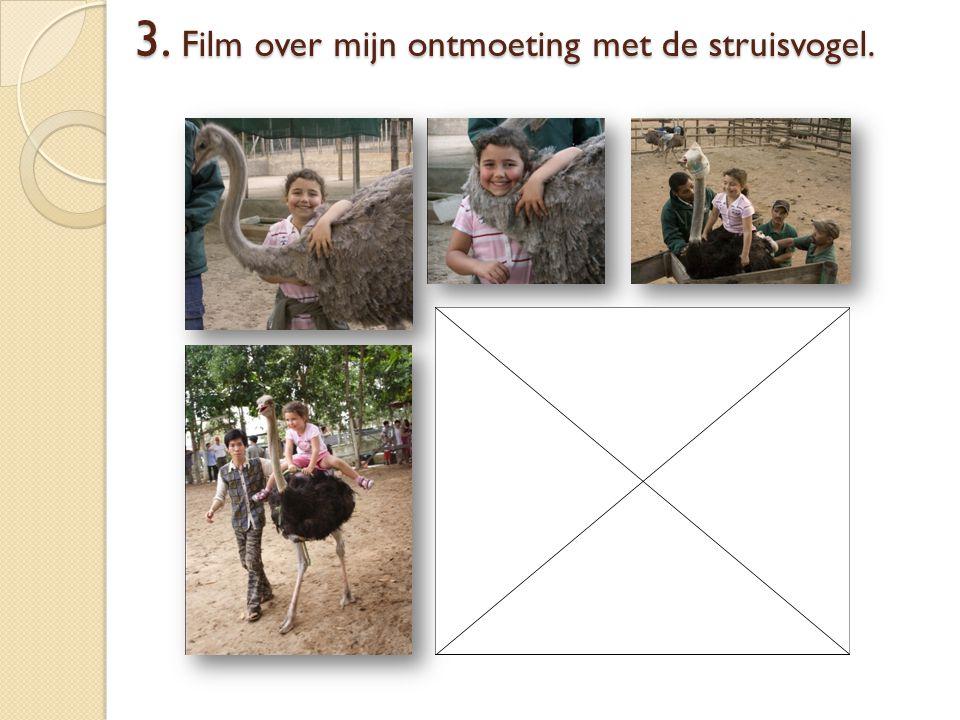 3. Film over mijn ontmoeting met de struisvogel.