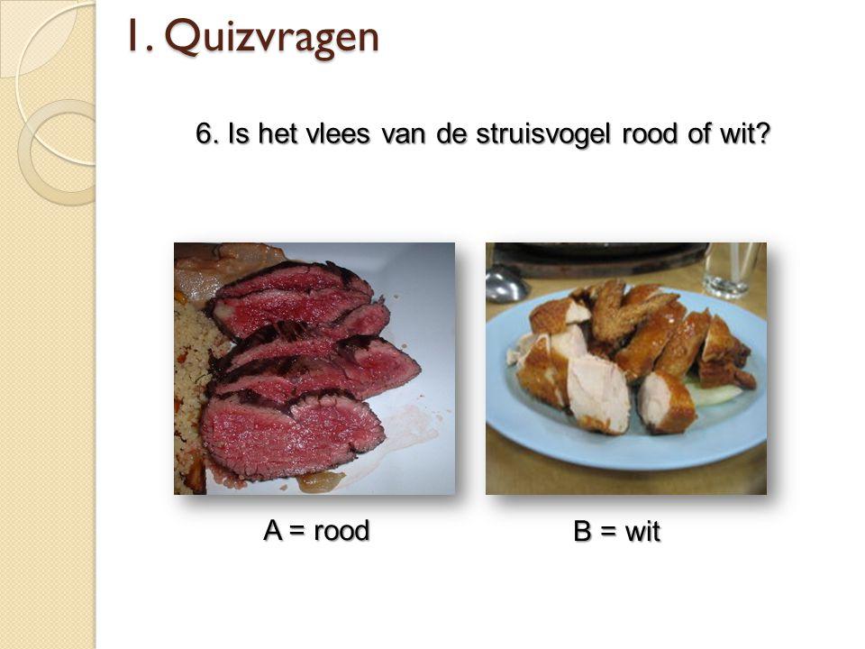 6. Is het vlees van de struisvogel rood of wit