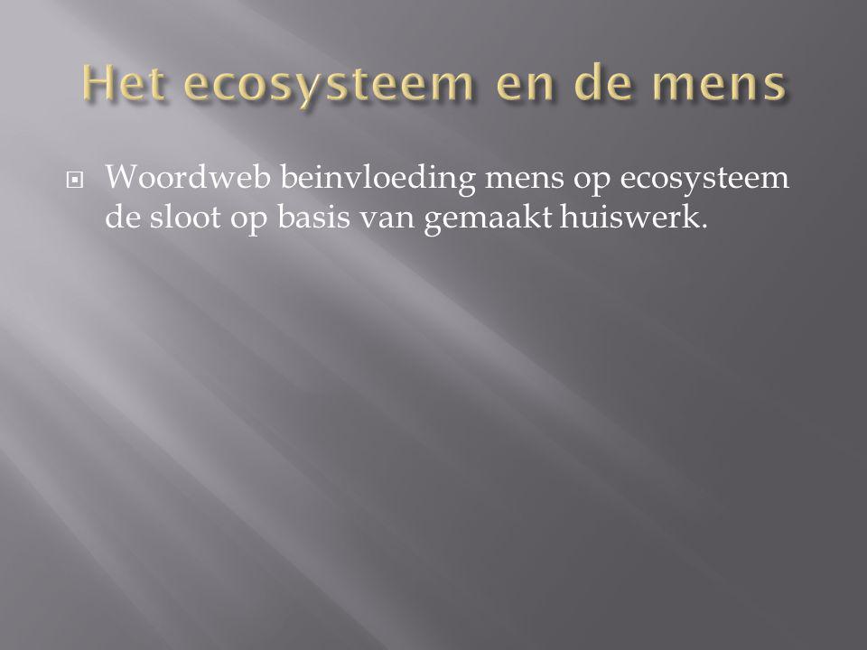 Het ecosysteem en de mens