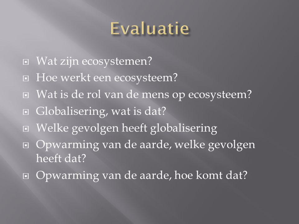 Evaluatie Wat zijn ecosystemen Hoe werkt een ecosysteem
