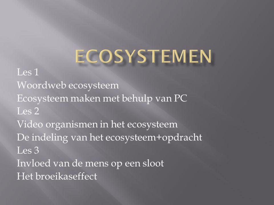Ecosystemen Les 1 Woordweb ecosysteem
