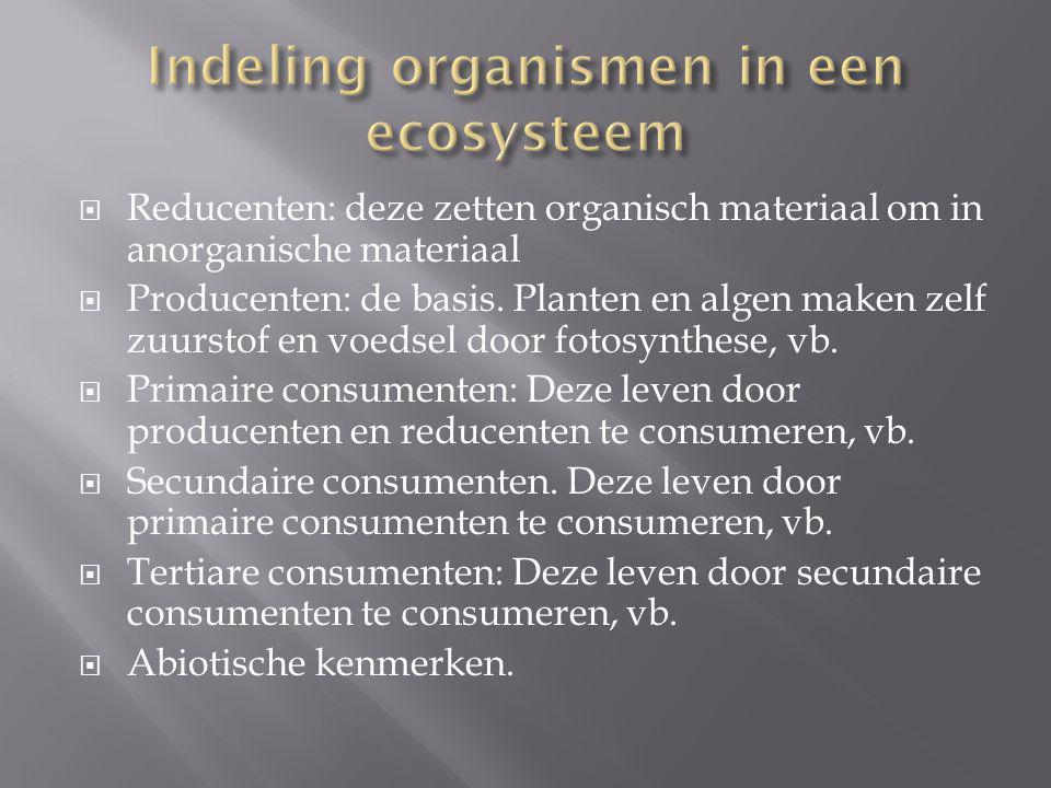 Indeling organismen in een ecosysteem