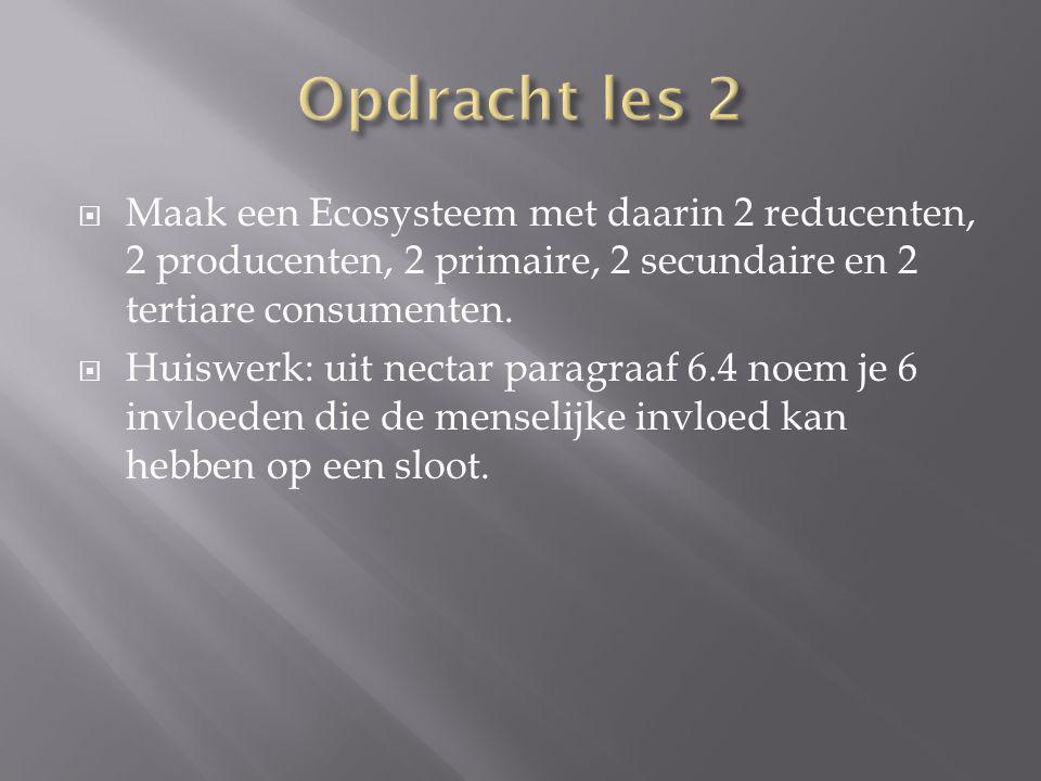 Opdracht les 2 Maak een Ecosysteem met daarin 2 reducenten, 2 producenten, 2 primaire, 2 secundaire en 2 tertiare consumenten.
