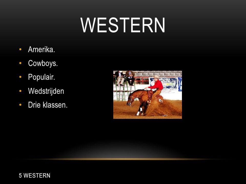 WESTERN Amerika. Cowboys. Populair. Wedstrijden Drie klassen.