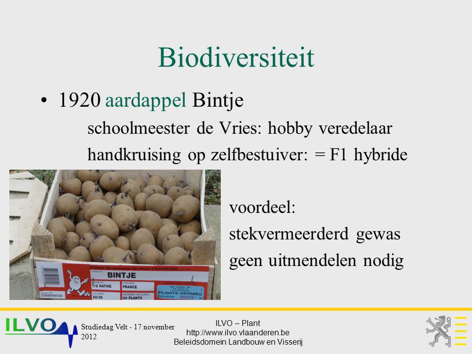 Biodiversiteit 1920 aardappel Bintje