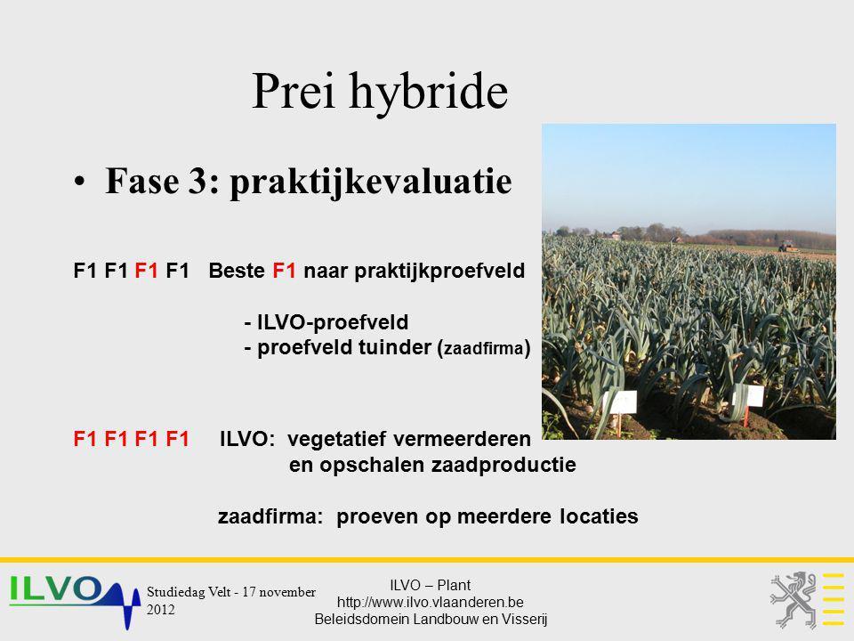 Prei hybride Fase 3: praktijkevaluatie