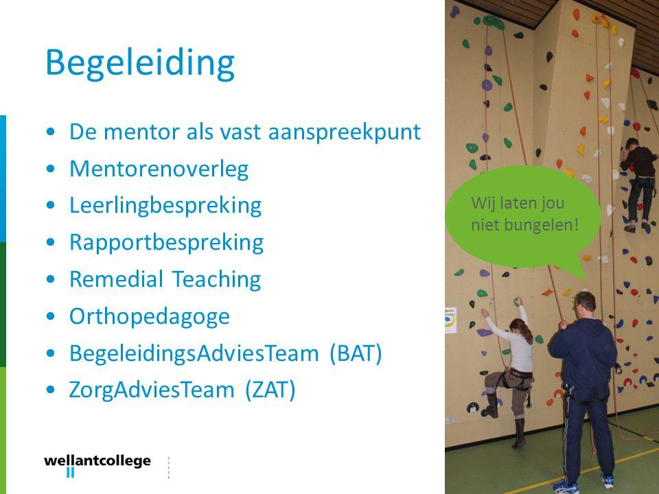 Begeleiding De mentor als vast aanspreekpunt Mentorenoverleg