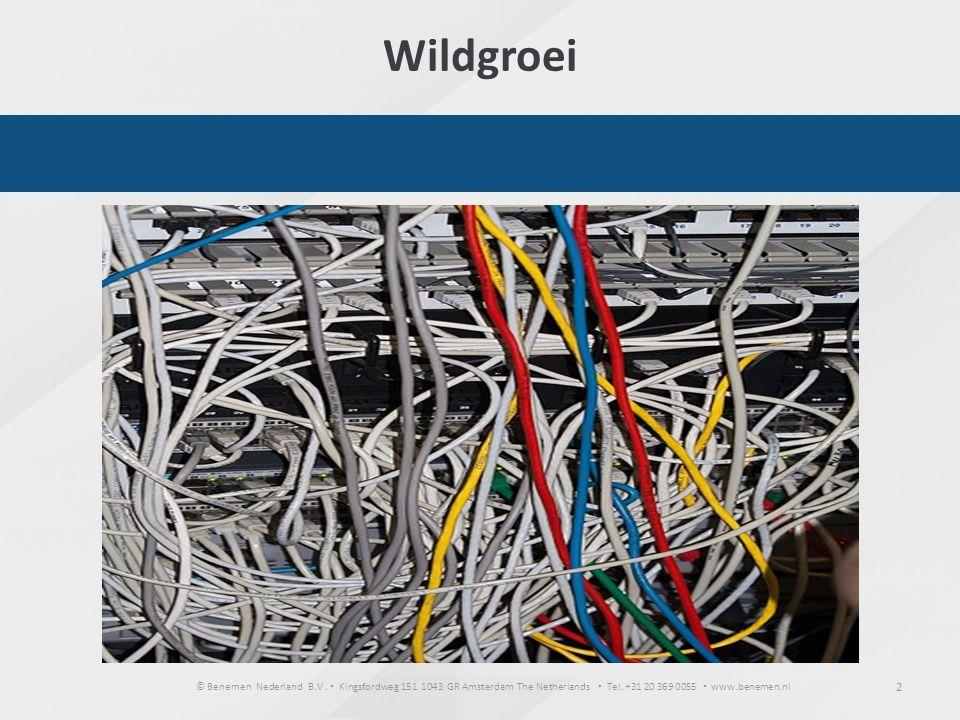 Wildgroei SITUATIE Zelf gestart in 1998….