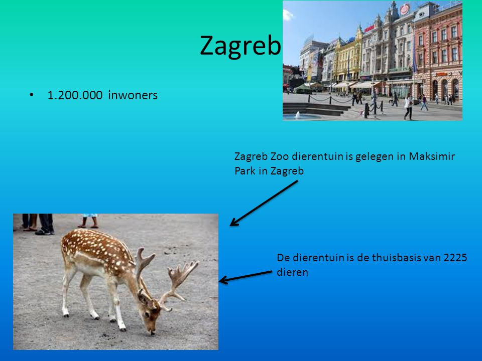 Zagreb 1.200.000 inwoners. Zagreb Zoo dierentuin is gelegen in Maksimir Park in Zagreb.