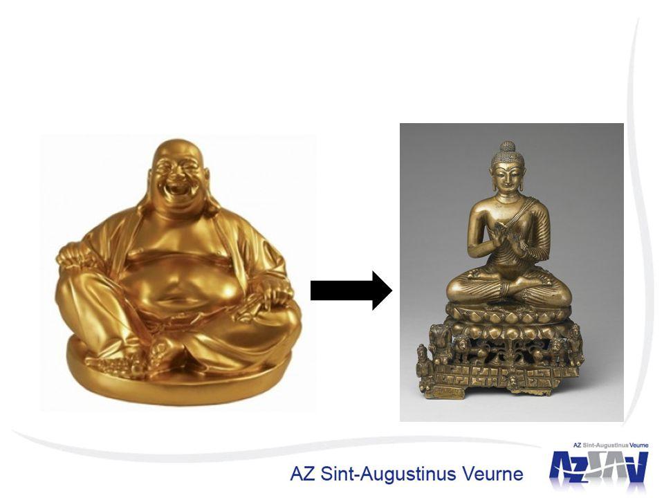 We kunnen van een blije dikkerd een gezonde en psychisch evenwichtige magere maken